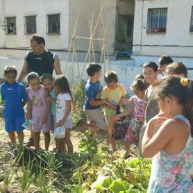 De visita en un huerto urbano en m laga para aprender - Huerto urbano malaga ...