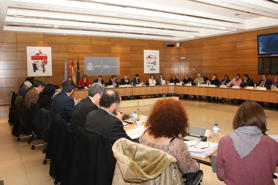 Meeting of the State Council of the Roma People, of which the FSG is a member