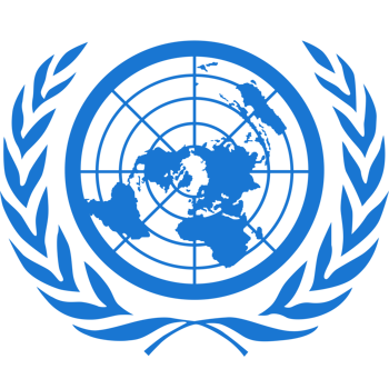 We contribute to the Universal Periodic Review (UPR) of the United Nations, providing information on progress and challenges in the defence of the rights of Roma people